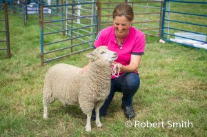 Sheep judging-21